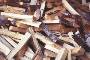 Choosing the best wood for a pizza oven